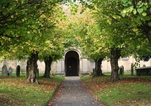 Limes trees leading to All Saints Church, Helmsley